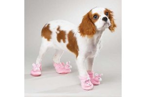 doggy-slippers-roze-m-p-4